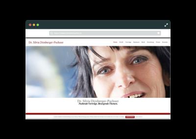 Webseite Dirnberger-Puchner